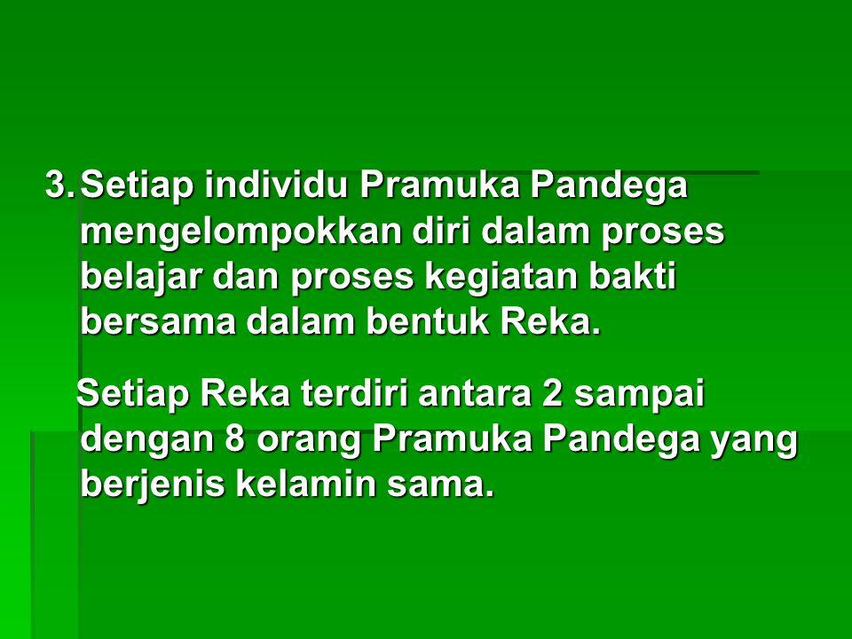 Setiap individu Pramuka Pandega mengelompokkan diri dalam proses belajar dan proses kegiatan bakti bersama dalam bentuk Reka.