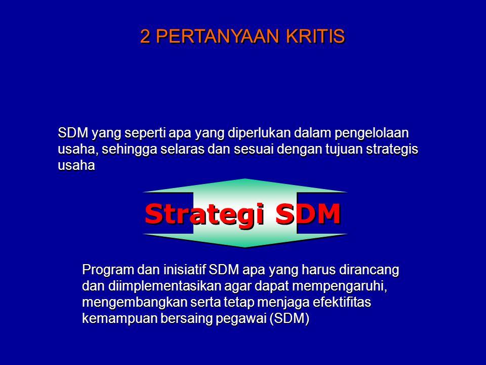 Strategi SDM 2 PERTANYAAN KRITIS