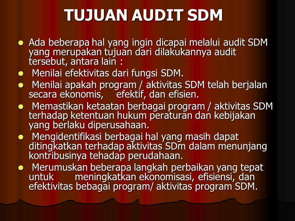 TUJUAN AUDIT SDM Ada beberapa hal yang ingin dicapai melalui audit SDM yang merupakan tujuan dari dilakukannya audit tersebut, antara lain :