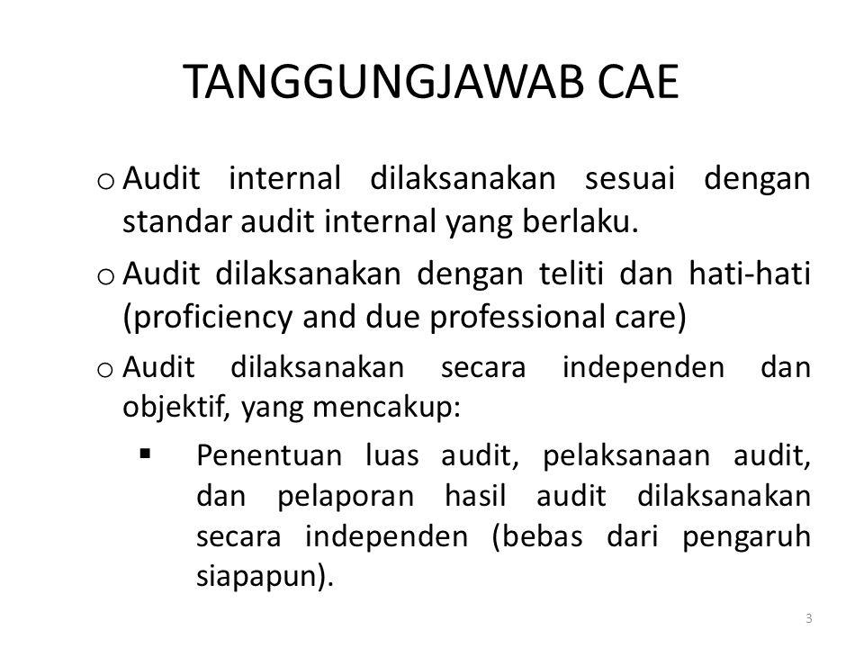 TANGGUNGJAWAB CAE Audit internal dilaksanakan sesuai dengan standar audit internal yang berlaku.