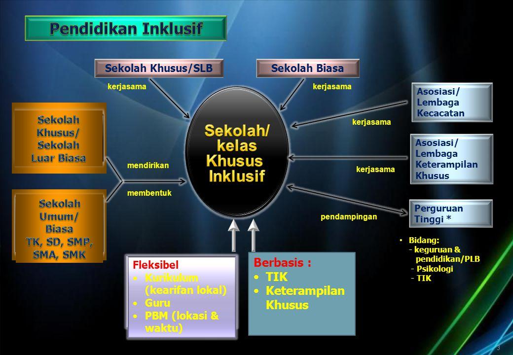 PROGRAM PENDIDIKAN INKLUSI
