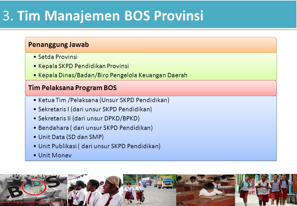 3. Tim Manajemen BOS Provinsi