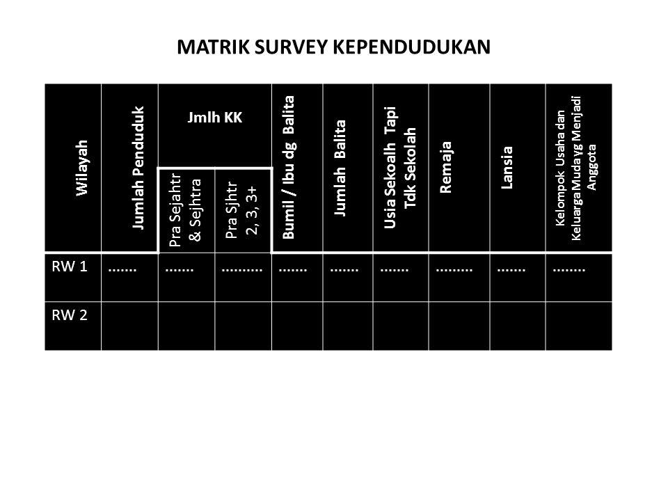 MATRIK SURVEY KEPENDUDUKAN
