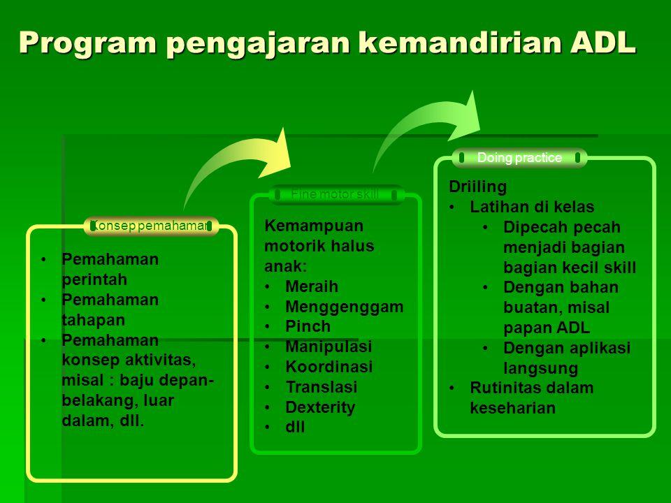 Program pengajaran kemandirian ADL
