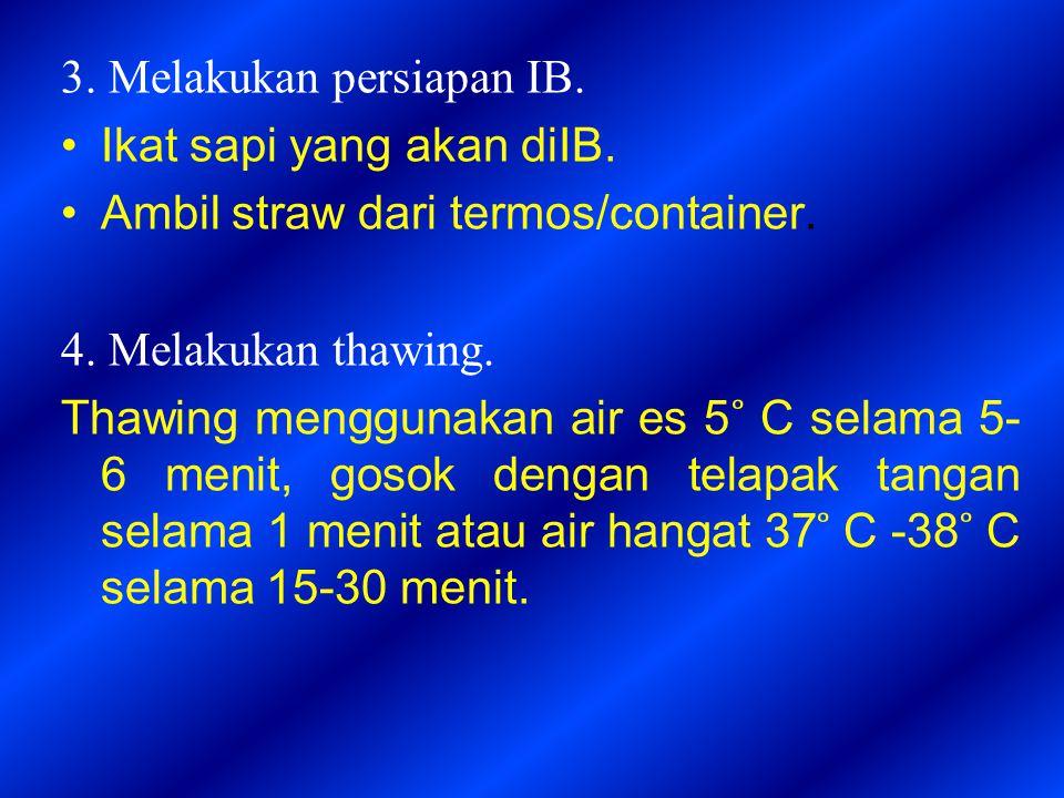 3. Melakukan persiapan IB.