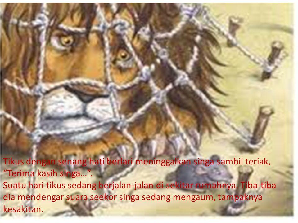 Tikus dengan senang hati berlari meninggalkan singa sambil teriak, Terima kasih singa… .