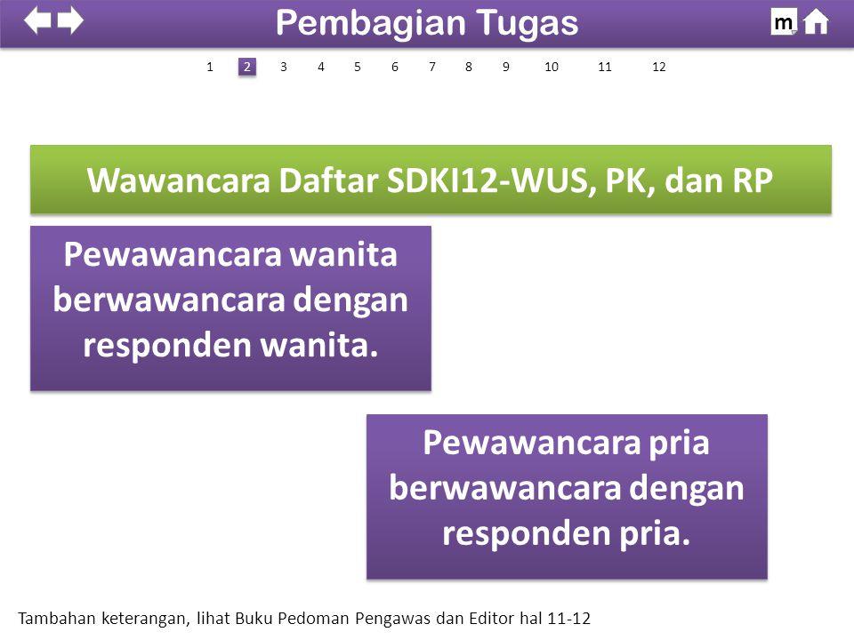Wawancara Daftar SDKI12-WUS, PK, dan RP