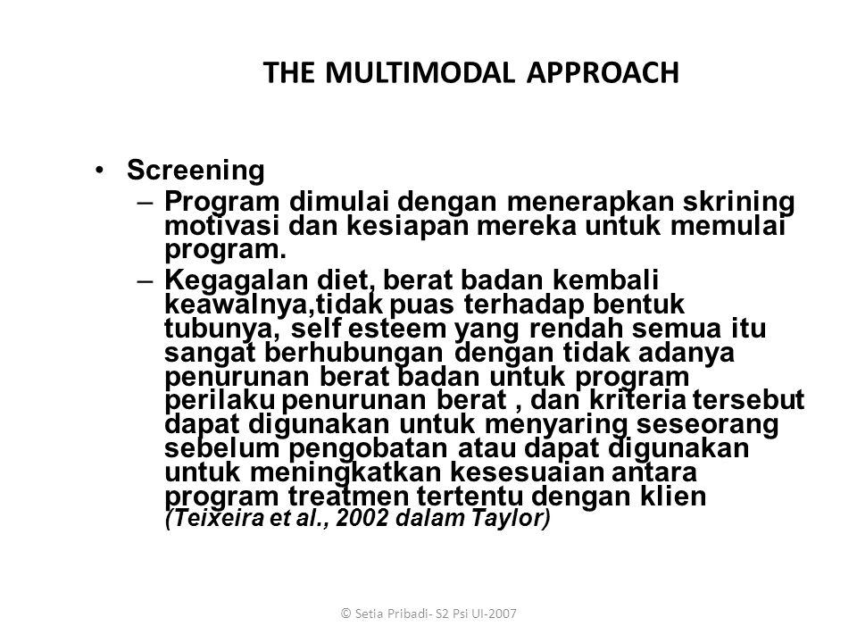 THE MULTIMODAL APPROACH