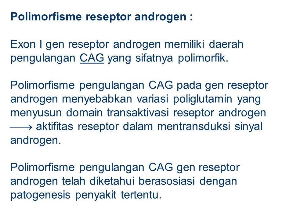 Polimorfisme reseptor androgen : Exon I gen reseptor androgen memiliki daerah pengulangan CAG yang sifatnya polimorfik.