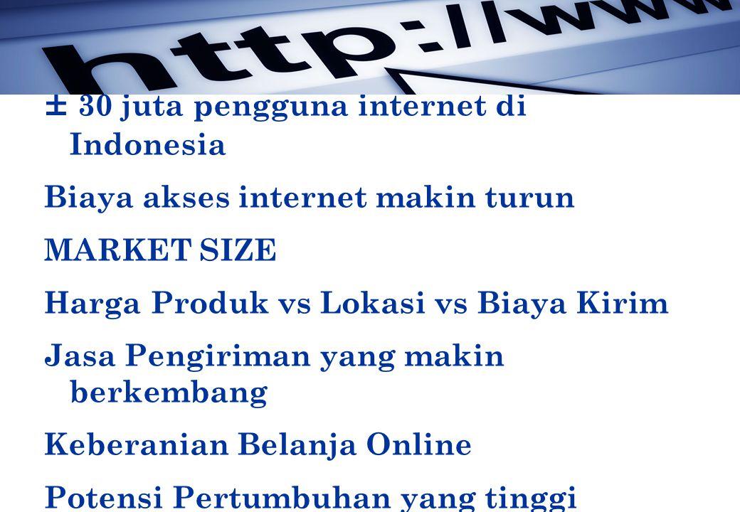 ± 30 juta pengguna internet di Indonesia