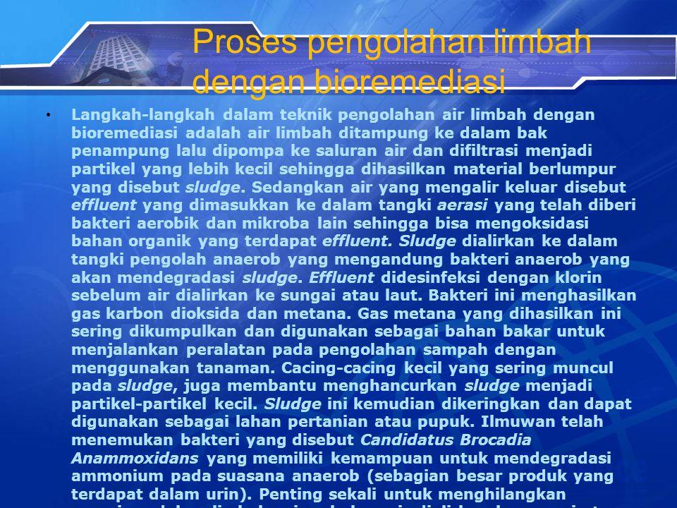 Proses pengolahan limbah dengan bioremediasi