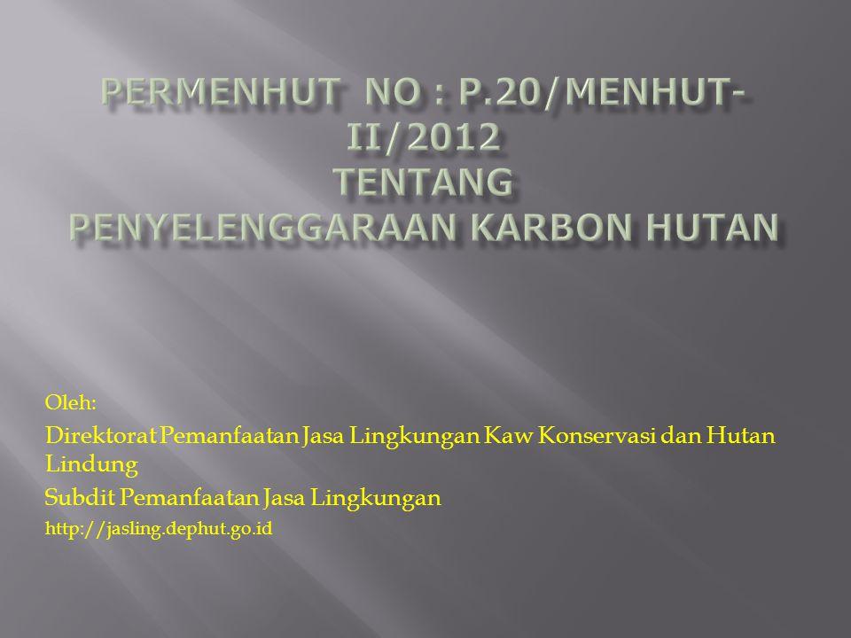 PERMENHUT NO : P.20/Menhut-II/2012 tentang PENYELENGGARAAN KARBON HUTAN