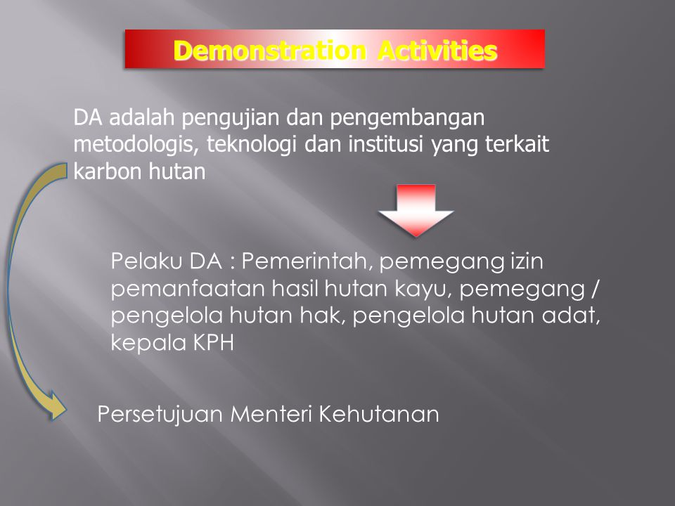 Demonstration Activities