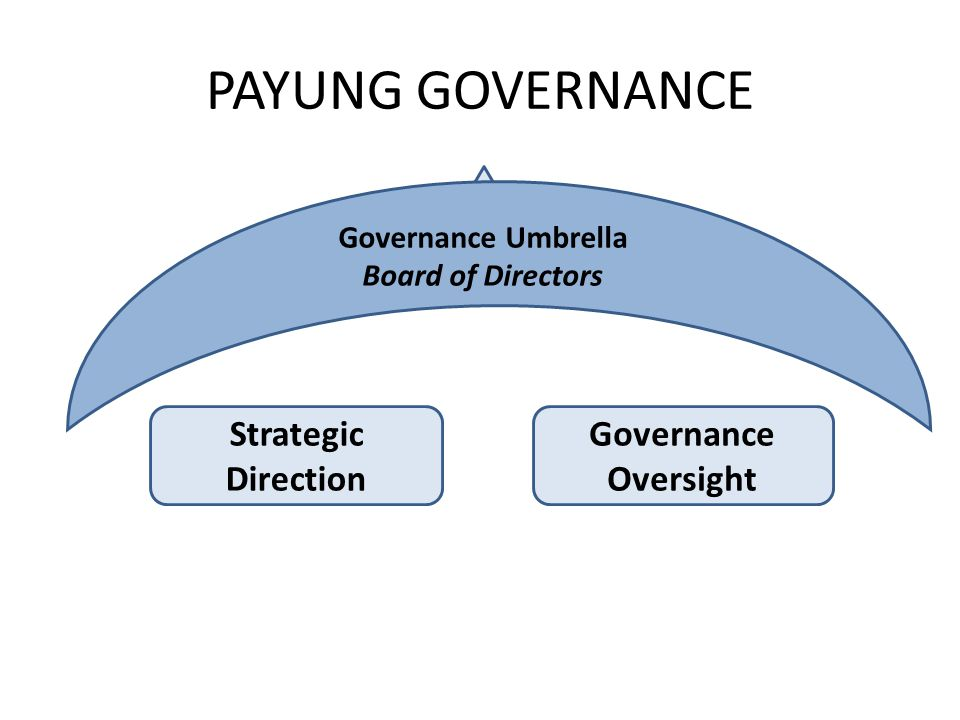 PAYUNG GOVERNANCE Strategic Direction Governance Oversight