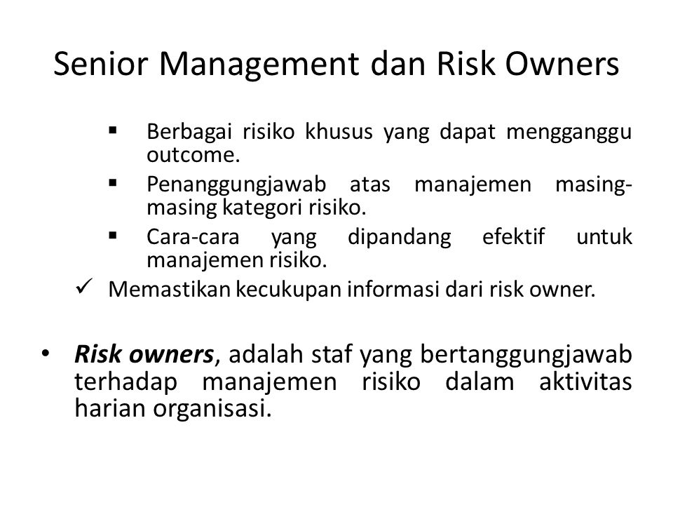 Senior Management dan Risk Owners