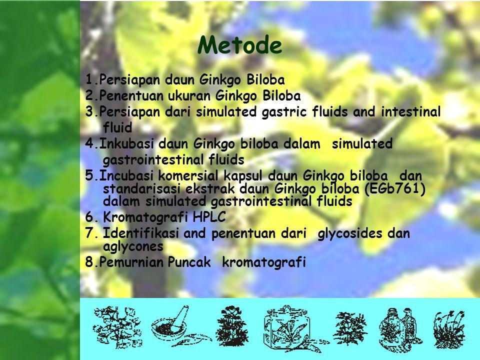 Metode 1.Persiapan daun Ginkgo Biloba 2.Penentuan ukuran Ginkgo Biloba