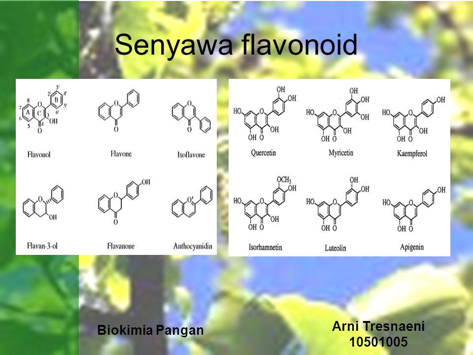 Senyawa flavonoid Arni Tresnaeni 10501005 Biokimia Pangan