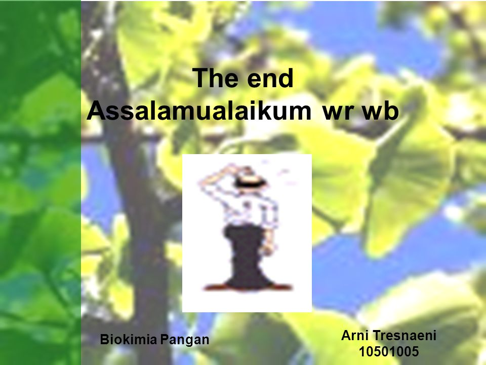 The end Assalamualaikum wr wb