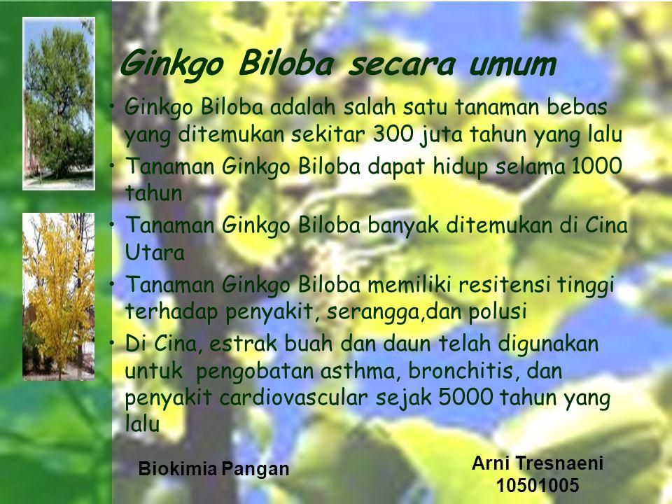Ginkgo Biloba secara umum