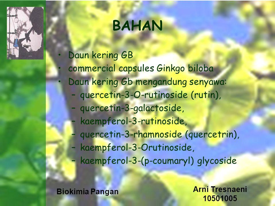 BAHAN Daun kering GB commercial capsules Ginkgo biloba