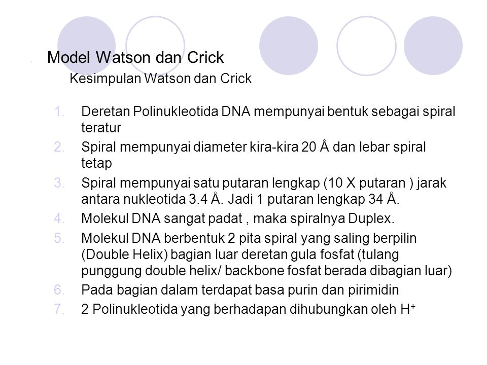 . Model Watson dan Crick Kesimpulan Watson dan Crick. Deretan Polinukleotida DNA mempunyai bentuk sebagai spiral teratur.