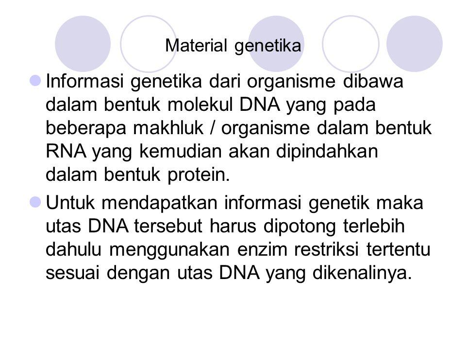 Material genetika