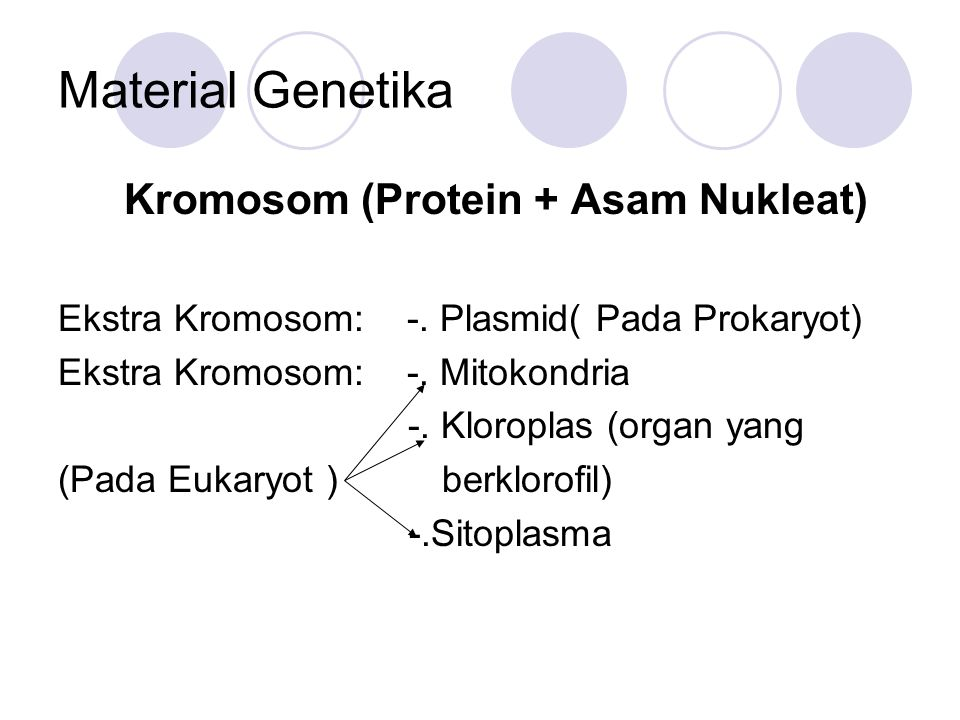 Kromosom (Protein + Asam Nukleat)
