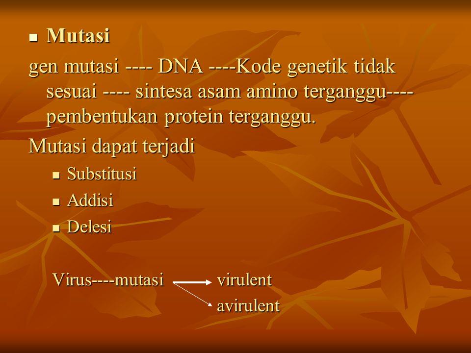 Mutasi gen mutasi ---- DNA ----Kode genetik tidak sesuai ---- sintesa asam amino terganggu----pembentukan protein terganggu.