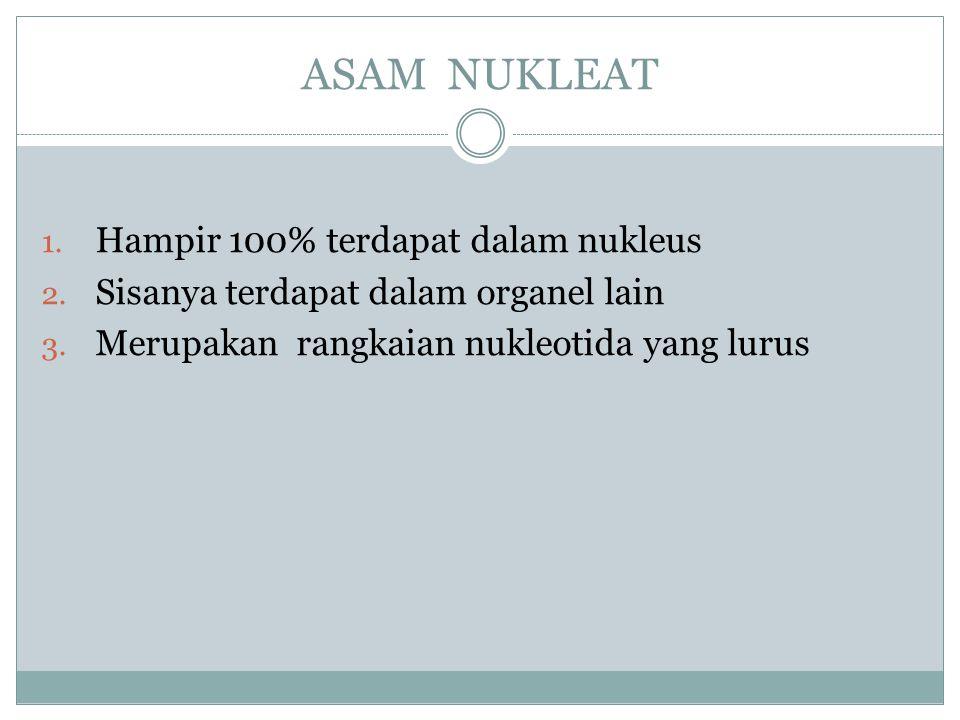 ASAM NUKLEAT Hampir 100% terdapat dalam nukleus