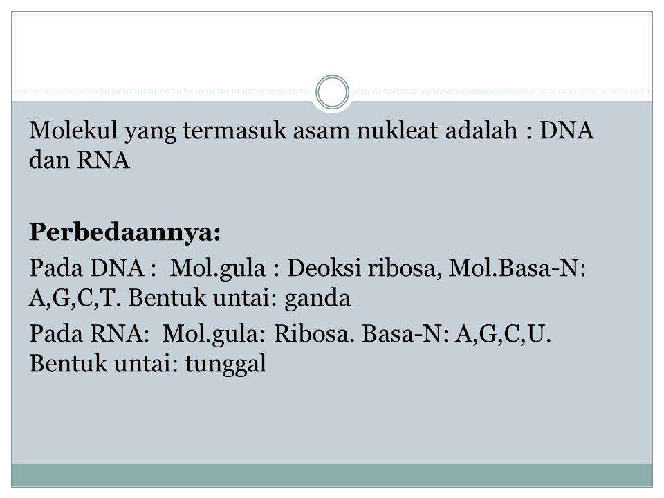 Molekul yang termasuk asam nukleat adalah : DNA dan RNA Perbedaannya: Pada DNA : Mol.gula : Deoksi ribosa, Mol.Basa-N: A,G,C,T.