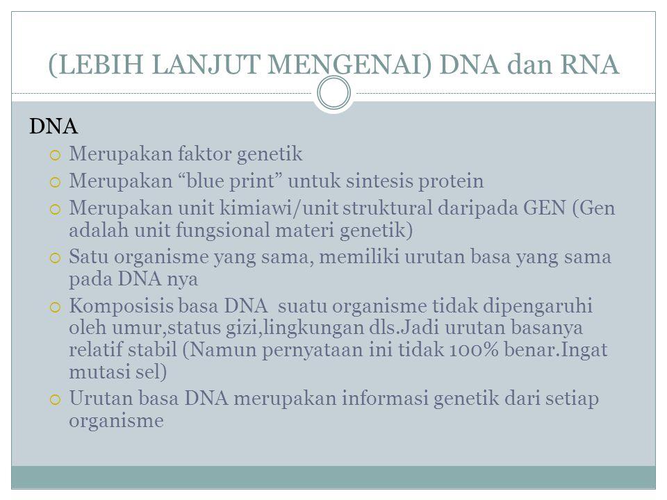 (LEBIH LANJUT MENGENAI) DNA dan RNA