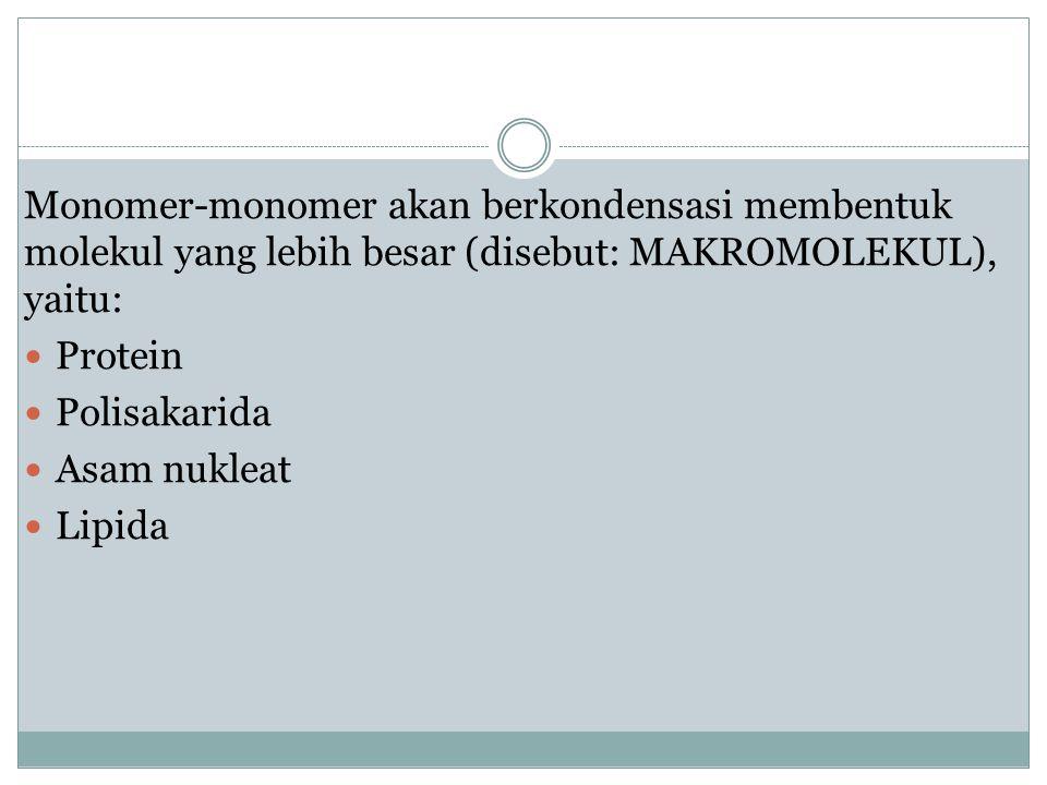 Monomer-monomer akan berkondensasi membentuk molekul yang lebih besar (disebut: MAKROMOLEKUL), yaitu: