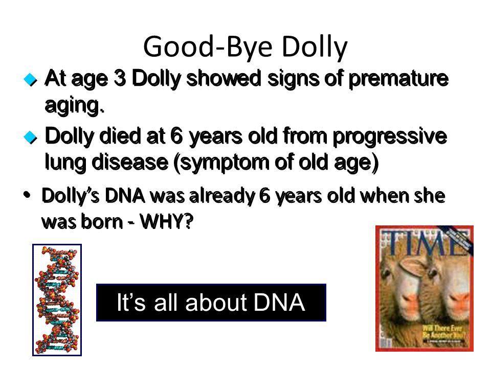Good-Bye Dolly It's all about DNA