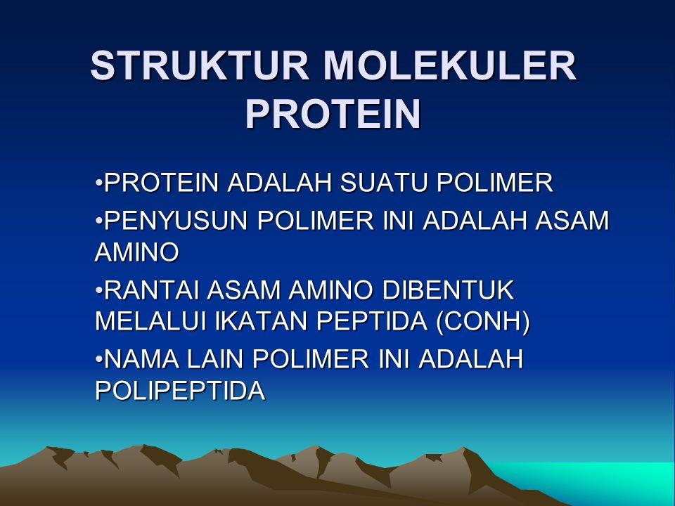 STRUKTUR MOLEKULER PROTEIN