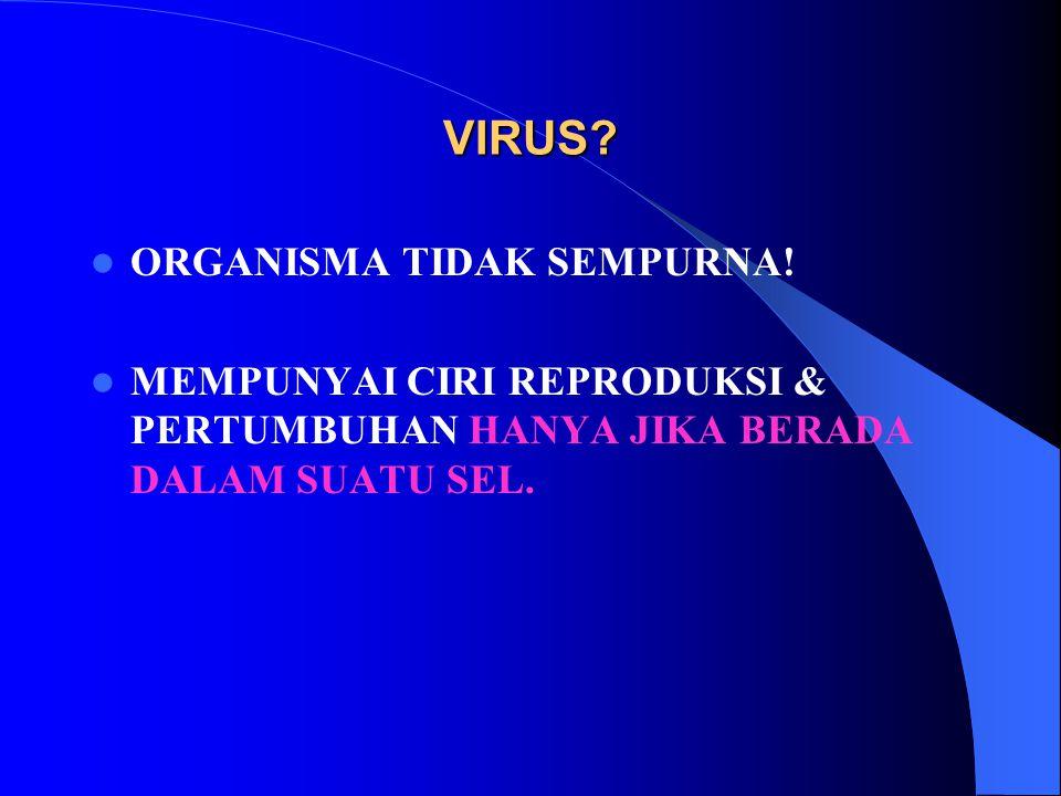 VIRUS ORGANISMA TIDAK SEMPURNA!