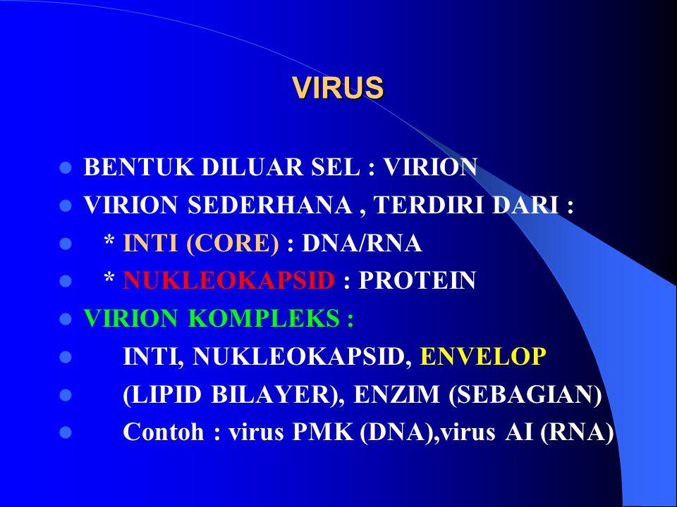 VIRUS BENTUK DILUAR SEL : VIRION VIRION SEDERHANA , TERDIRI DARI :