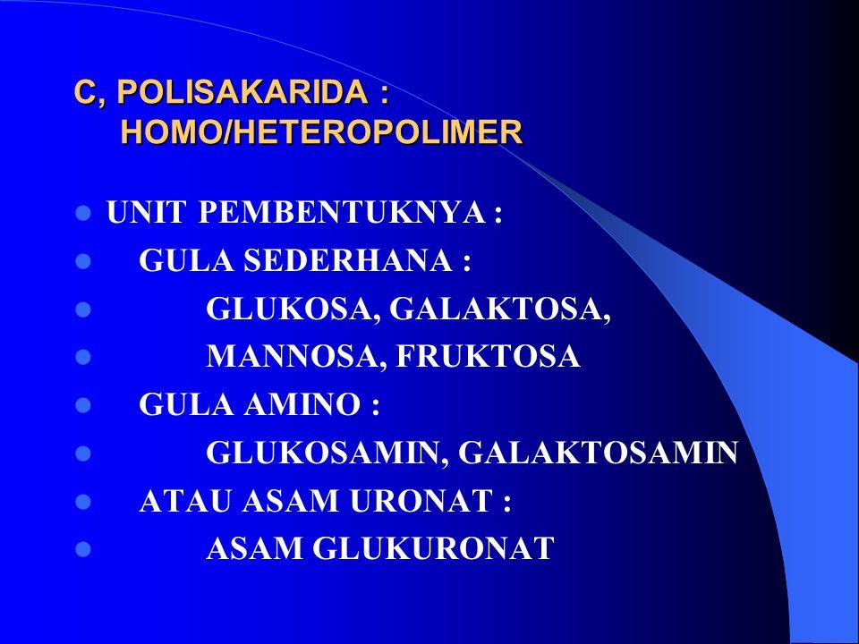 C, POLISAKARIDA : HOMO/HETEROPOLIMER
