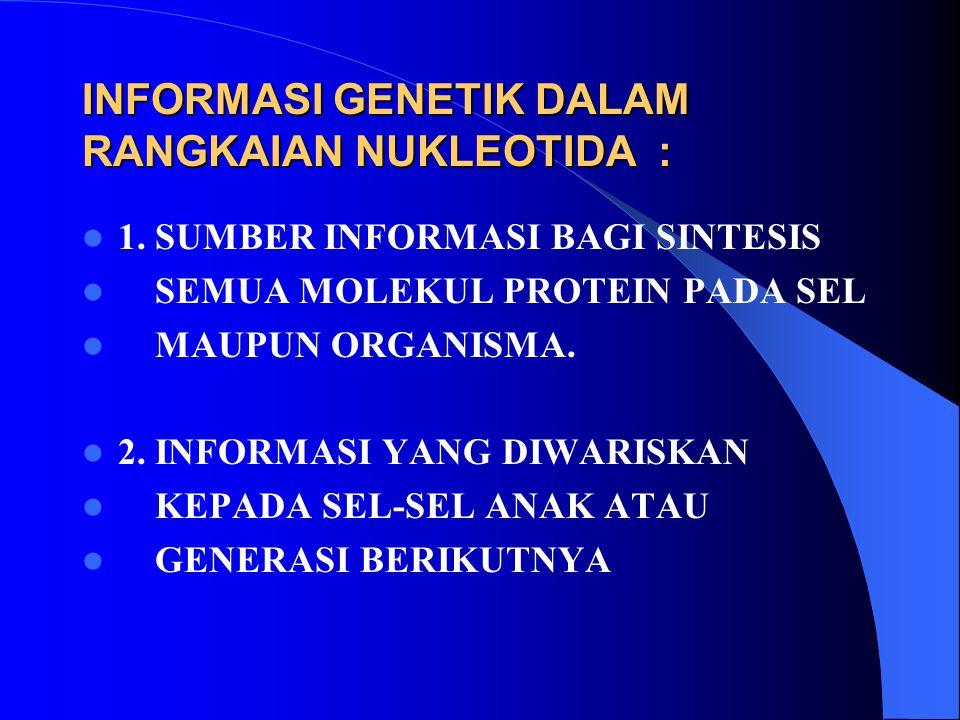 INFORMASI GENETIK DALAM RANGKAIAN NUKLEOTIDA :