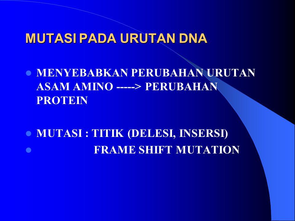 MUTASI PADA URUTAN DNA MENYEBABKAN PERUBAHAN URUTAN ASAM AMINO -----> PERUBAHAN PROTEIN. MUTASI : TITIK (DELESI, INSERSI)