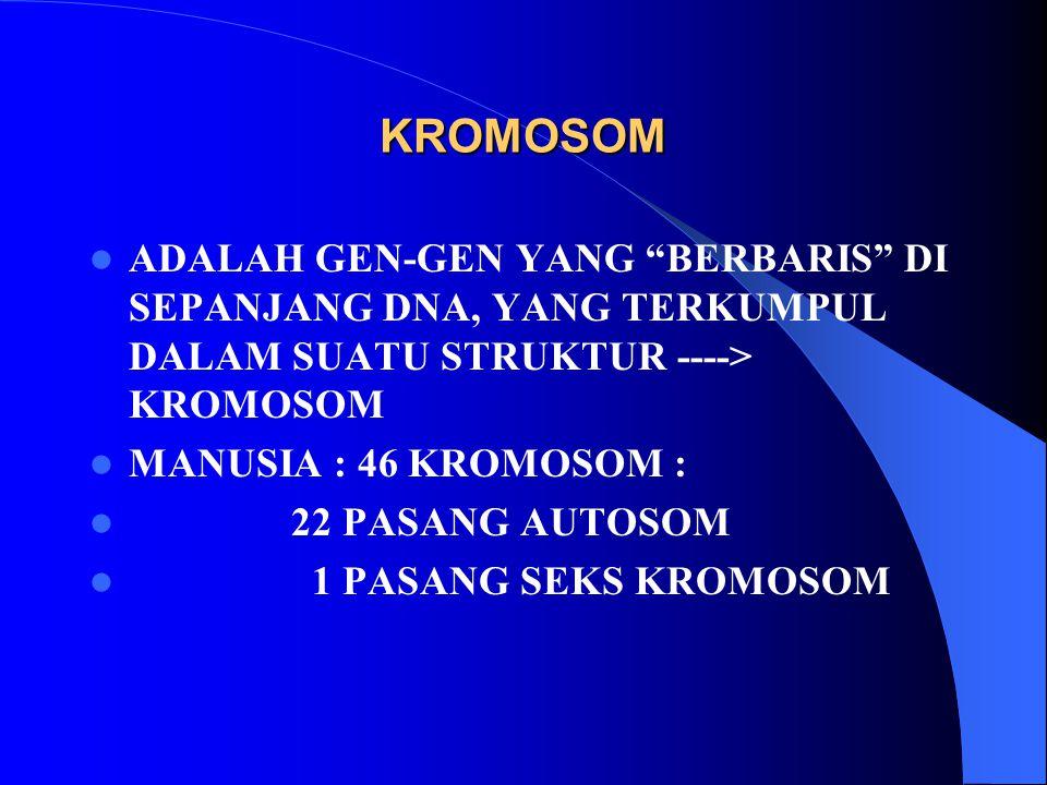 KROMOSOM ADALAH GEN-GEN YANG BERBARIS DI SEPANJANG DNA, YANG TERKUMPUL DALAM SUATU STRUKTUR ----> KROMOSOM.