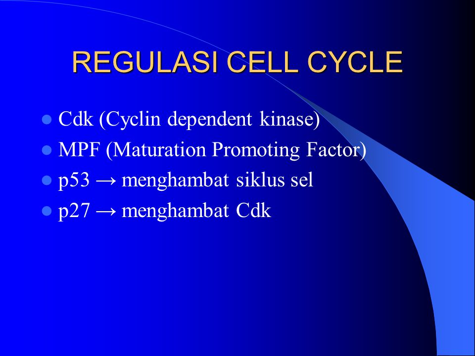 REGULASI CELL CYCLE Cdk (Cyclin dependent kinase)