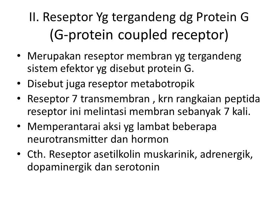 II. Reseptor Yg tergandeng dg Protein G (G-protein coupled receptor)
