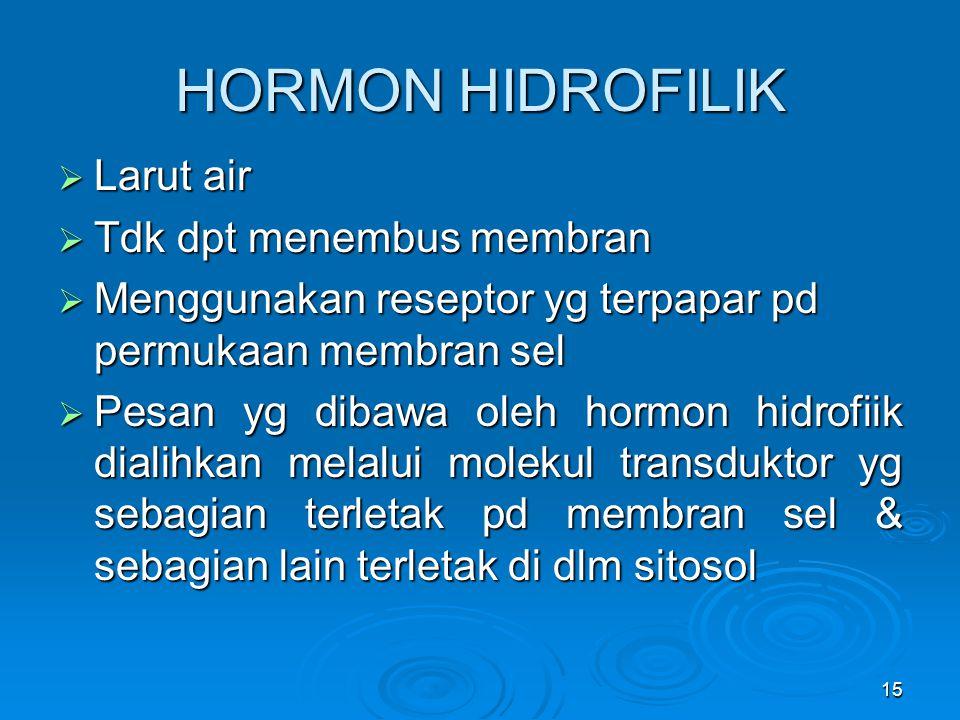 HORMON HIDROFILIK Larut air Tdk dpt menembus membran