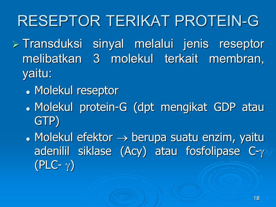 RESEPTOR TERIKAT PROTEIN-G
