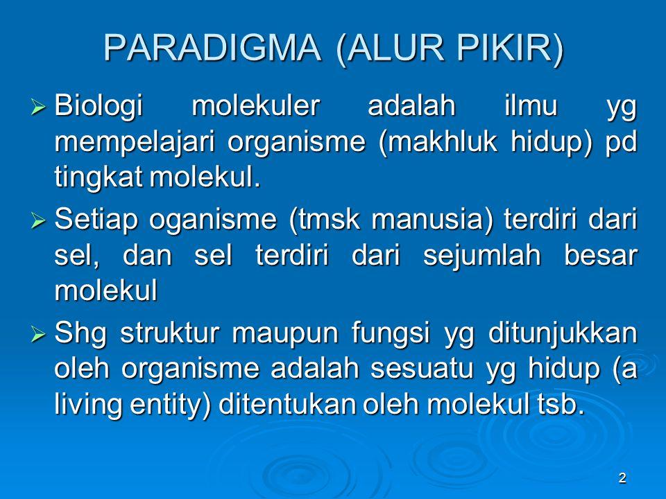 PARADIGMA (ALUR PIKIR)
