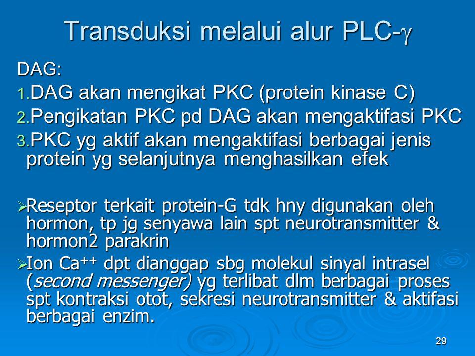 Transduksi melalui alur PLC-