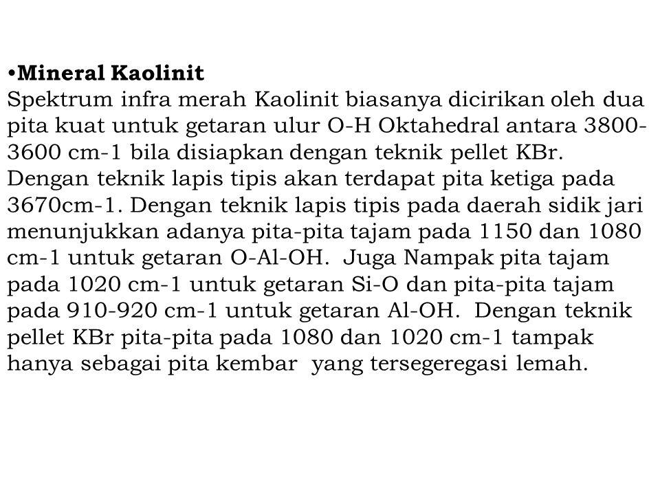 •Mineral Kaolinit