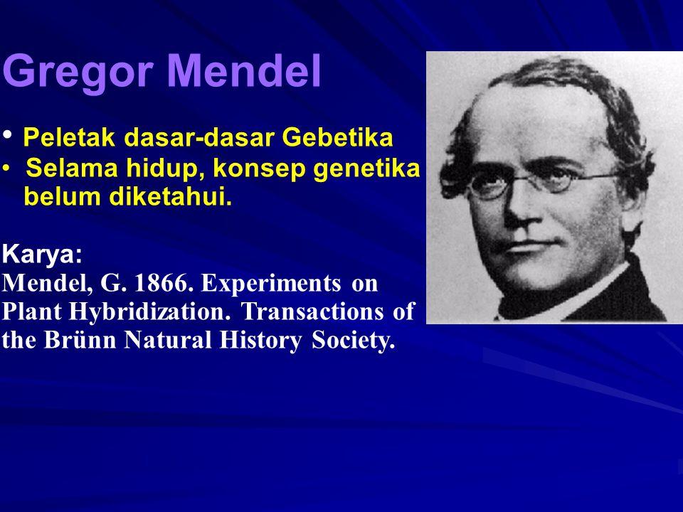 Gregor Mendel Peletak dasar-dasar Gebetika