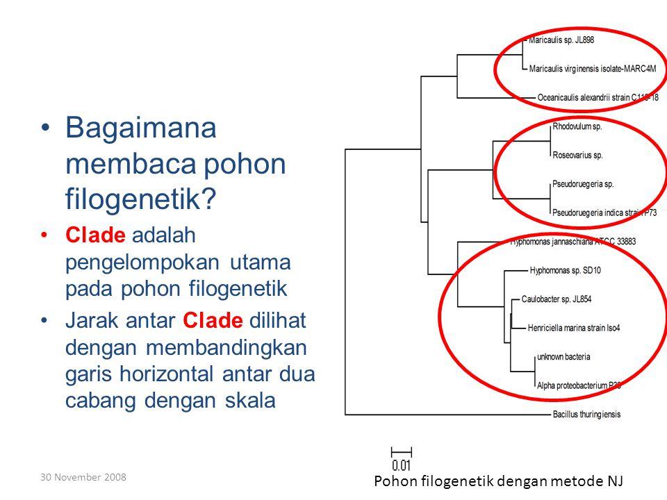 Bagaimana membaca pohon filogenetik