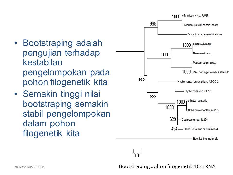 Bootstraping adalah pengujian terhadap kestabilan pengelompokan pada pohon filogenetik kita